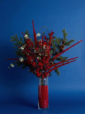 29_Cranberries_evergreens_Slider