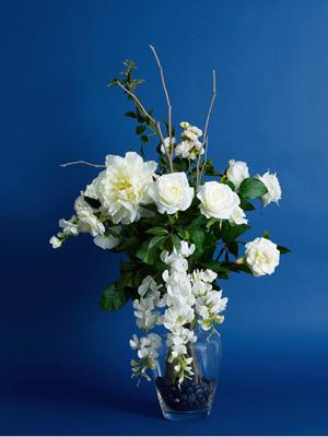 White Roses Wisteria